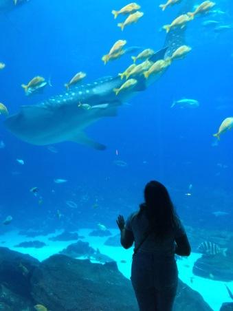Nicole & Whale Shark