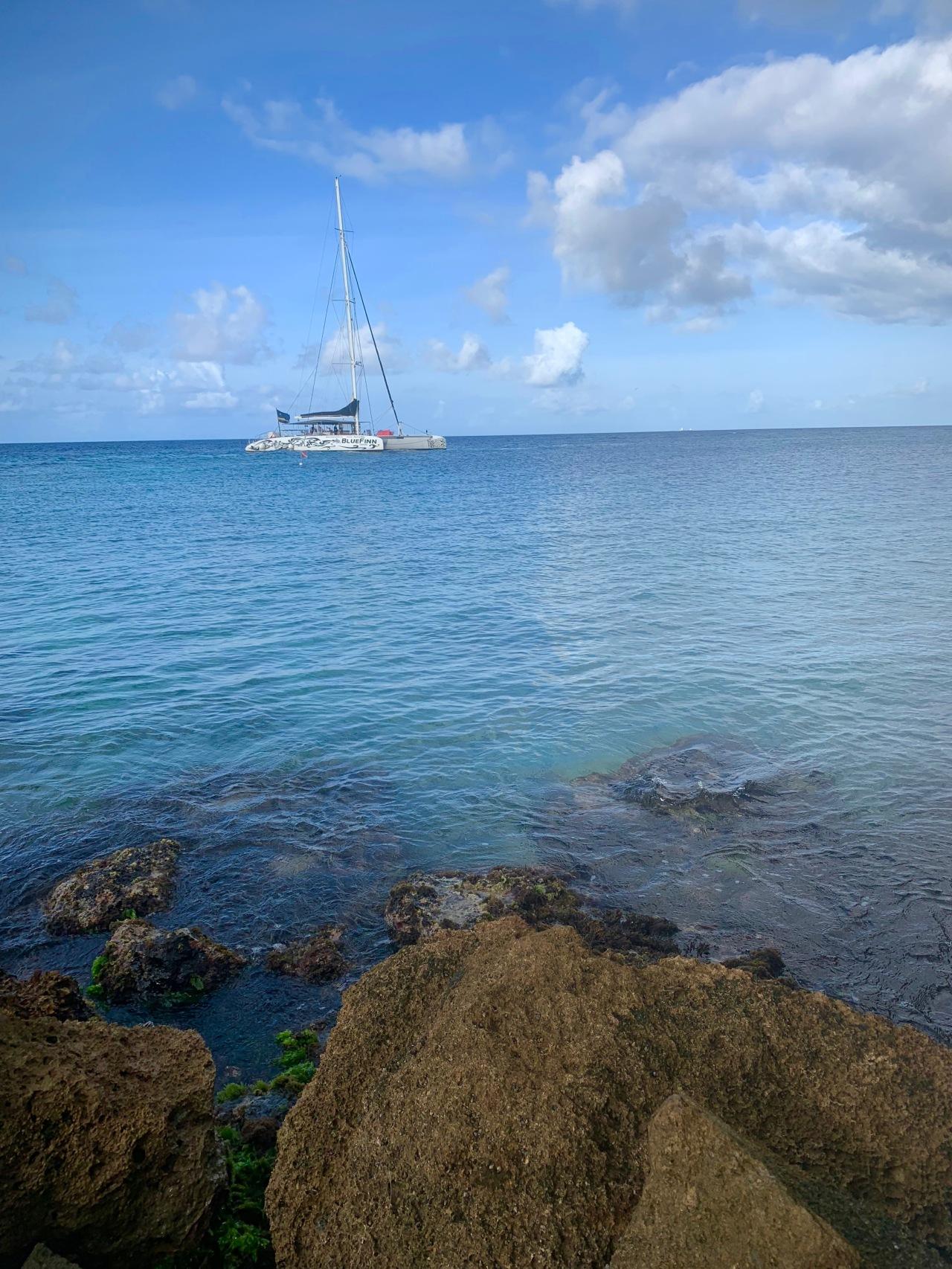 catamaran sailing into bay