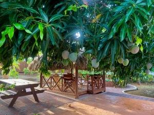 mango tree bungalow