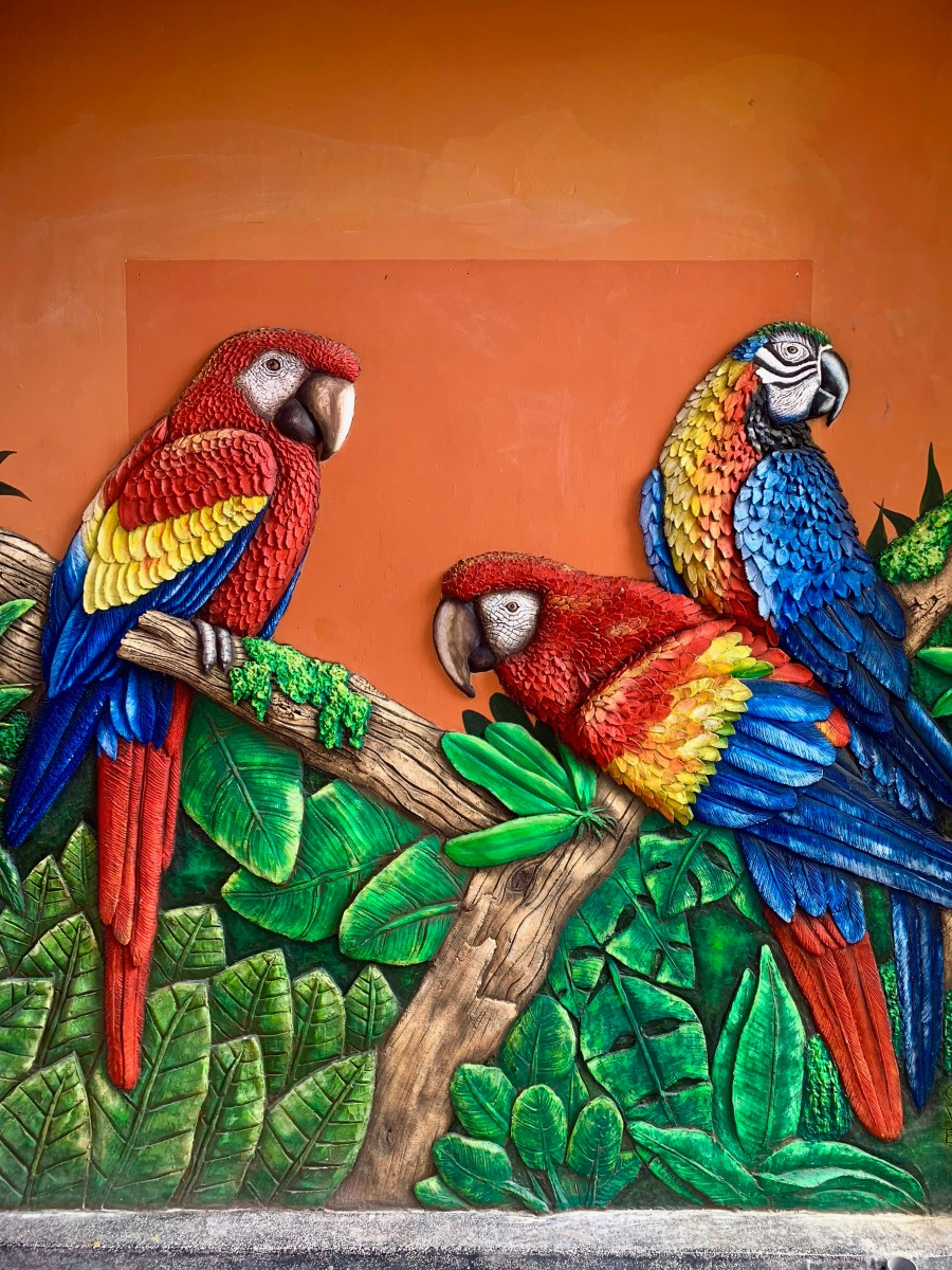 Parrot wall sculpture