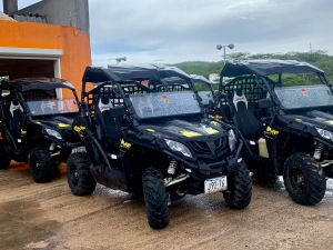 buggies lined up