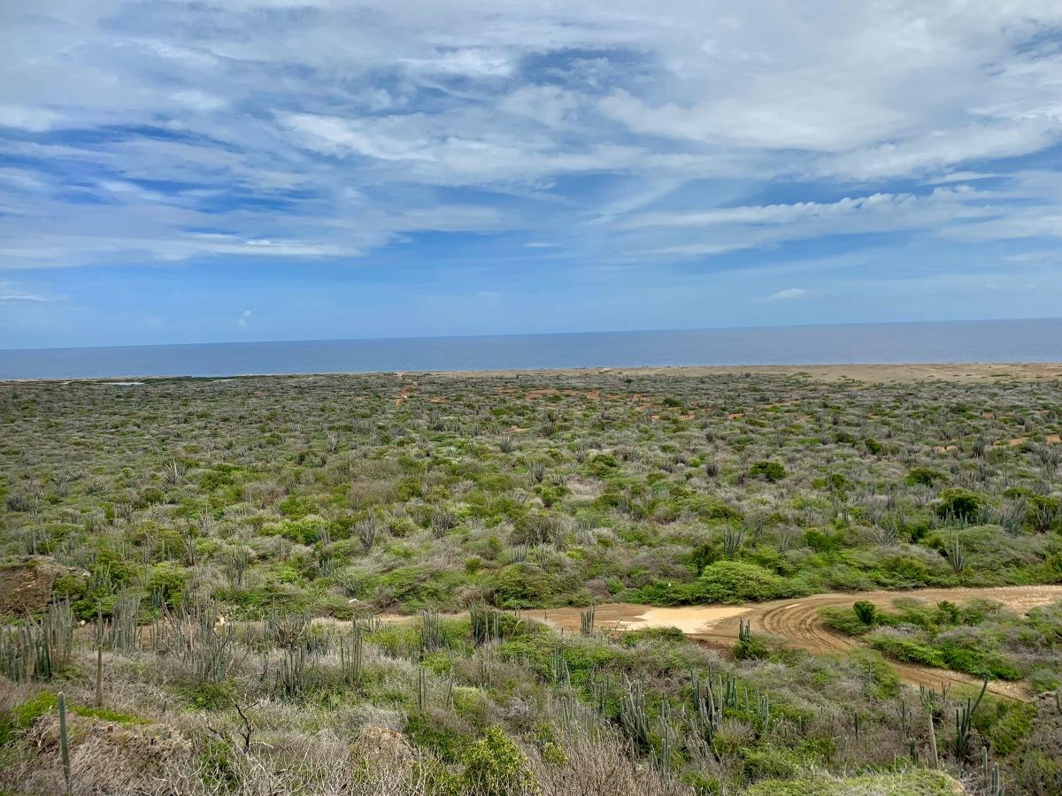 curacao landscape