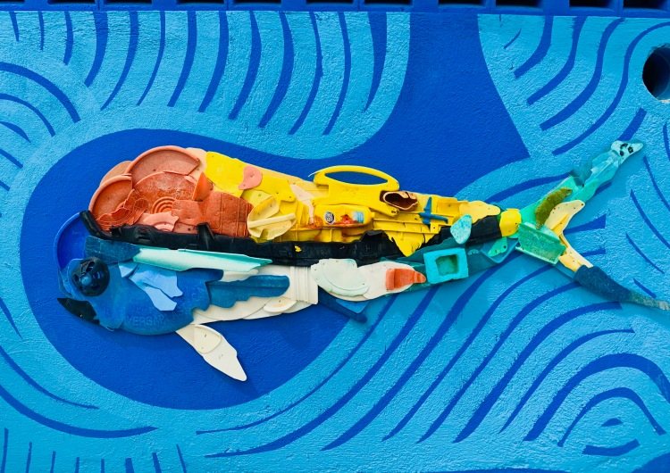 plastic pollution dolphin art